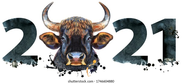 Watercolor illustration new year two thousand and twenty one with a bull head