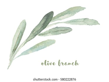 Watercolor illustration with olives