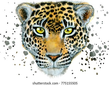 Watercolor illustration of panther. Hand drawn painting