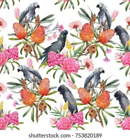 Watercolor illustration pattern  of orange banksias flowers, seeds and leaves. Australian floral . gray parrot.  pink flowers ginger. Torch Ginger .black cockatoo. tropical print