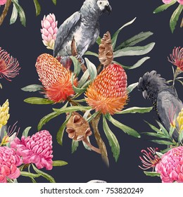 Watercolor illustration pattern  of orange banksias flowers, seeds and leaves. Australian floral . gray parrot.  pink flowers ginger. Torch Ginger .black cockatoo. tropical print . the dark background