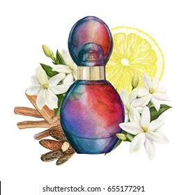 Watercolor illustration of Perfume with notes. Aroma composition illustrated
