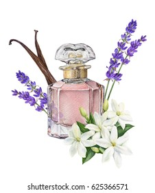 Watercolor illustration of Perfume with notes: lavender, jasmine, vanilla.  Aroma composition illustrated.