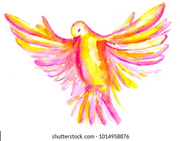 The watercolor illustration of pink, yellow, orange, red pigeon, symbol of the Holy Spirit, isolated on white background
