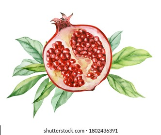 Watercolor illustration. Pomegranate cut in half with seeds and leaves.