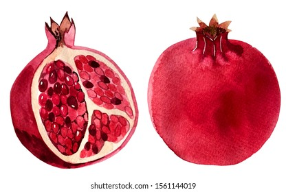 watercolor illustration. pomegranate fruit. isolated objects on white background