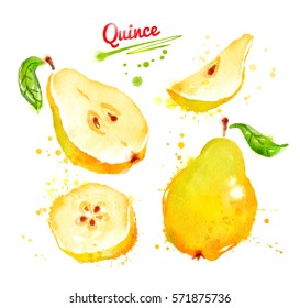 Watercolor illustration of quince, whole and sliced with leaf and paint smudges and splashes.