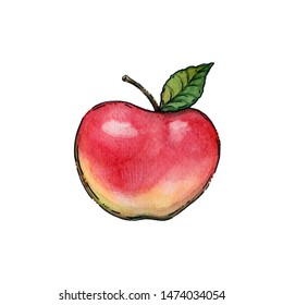 watercolor illustration of red ripe apple with one green leaf - concept of fruits, food and season
