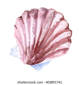 Watercolor illustration of sea shell. Scallop. Summer holidays raster design element.