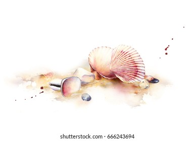 Watercolor illustration of a sea shells on a beach