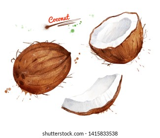 Watercolor illustration set of coconut, whole, half and piece with paint smudges and splashes.