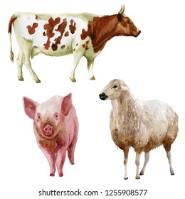 Watercolor illustration, set. Farm animals cow pig sheep