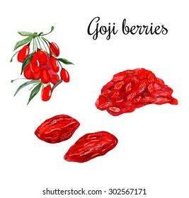 Watercolor illustration of super food Goji berry. Organic healthy food. Branch with berries, dried berries and heap of goji. Hand drawn isolated objects on white background.