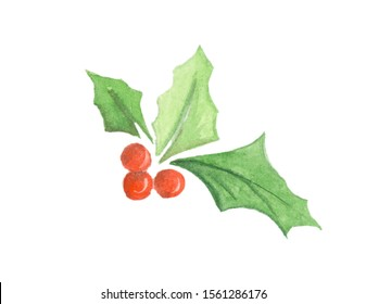 watercolor illustration of a traditional christmas holly plant. Pictures of Holly with red berries on a white background