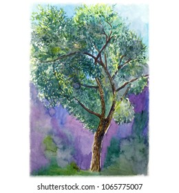 Watercolor illustration of a tree