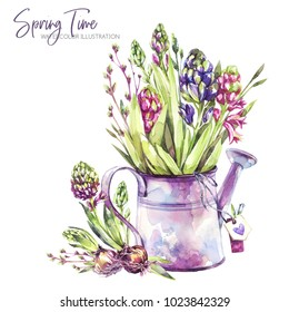 Watercolor illustration. Watering can with hyacinth seedlings and tags. Rustic objects. Spring collection in violet shades. ClipArt, DIY, scrapbooking elements. Holidays, wedding design. Horticulture.