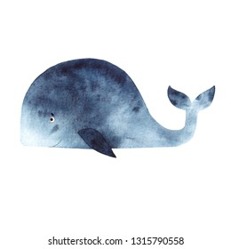 Watercolor illustration with whale on white background