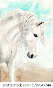 Watercolor illustration of a white horse with long white mane on the turquoise background