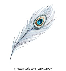 watercolor illustration of a white peacock feather