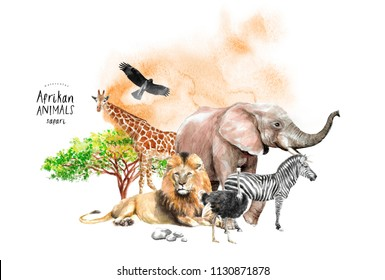 watercolor illustration of wildlife africa, drawings by hand giraffe, elephant, zebra, ostrich, lion, eagle, birds and southern trees in the savannah, safari