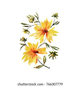 Watercolor illustration of a yellow spring flowers