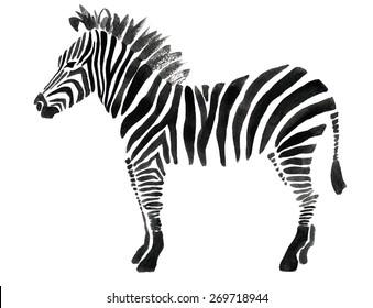 Watercolor illustration of a zebra