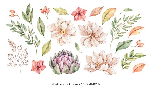 Watercolor illustrations. Autumn botanical collection (artichoke, wild flowers, leaves, branches). Floral Design elements. Perfect for wedding invitations, greeting cards, posters, prints