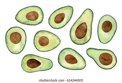 watercolor illustrations avocado. hand painted isolated elements.