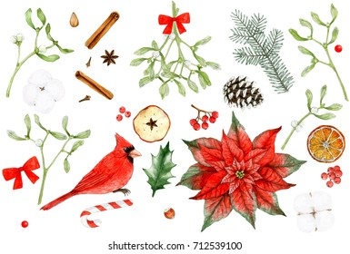 Watercolor illustrations - Christmas set. Merry Christmas decoration elements. Poinsettia, Mistletoe. Christmas Clip art. Watercolor Bird Cardinal. Watercolor paintings Isolated on white background.