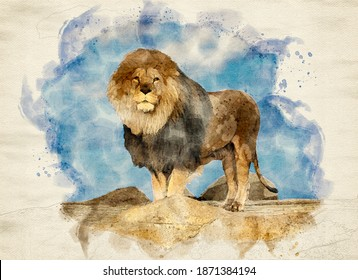 Watercolor image of male lion standing proudly on a cliff rock looking at the camera with blue sky in background. Computergenerated image.