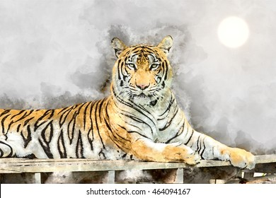 Watercolor image portrait of a bengal tiger are looking with sun.