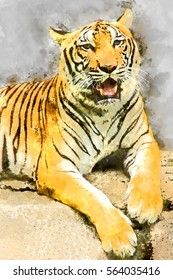Watercolor image of Royal Bengal tiger.