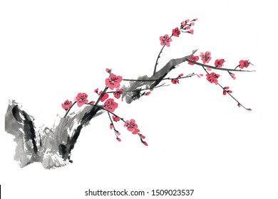 Watercolor and ink branch blossom sakura, cherry tree with flowers isolated on a white background. Hand painting on paper
