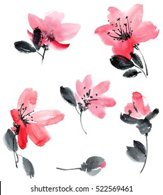 Watercolor and ink illustration of cherry flowers. Sumi-e, u-sin painting.