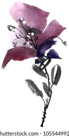 Watercolor and ink illustration of flower. Sumi-e, u-sin painting. Decorative drawing for postcard, invitation, greeting card.