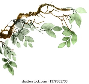 Watercolor and ink illustration of tree branch with leaves. Oriental traditional painting in style sumi-e and u-sin. Artistic illustration.