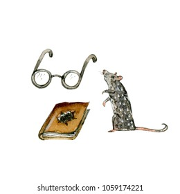 Watercolor and ink illustrations set of glasses, rat and diary book. Hand drawn objects.
