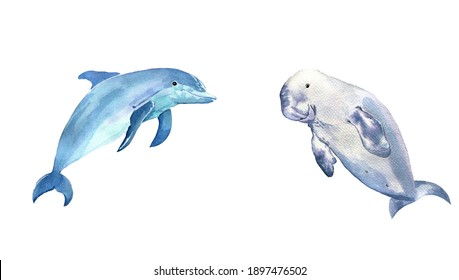 Watercolor jumping dolphin and rare manatee dugong isolated on white. Watercolor set of sea animals.