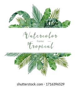Watercolor jungle frame with tropical palm leaves. Hand drawn illustration exotic green leaf with background. Square horizontal banner