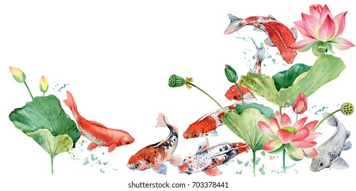 watercolor koi carp and lotus flower illustration.