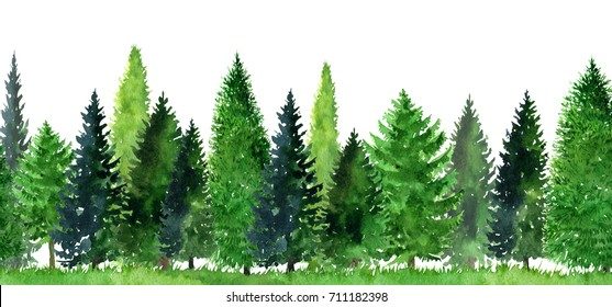 watercolor landscape with fir trees, abstract nature background, forest template, hand drawn illustration