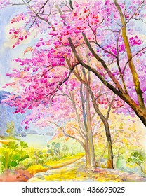 Watercolor landscape original painting colorful of  Wild himalayan cherry on  mountain and emotion in blue background