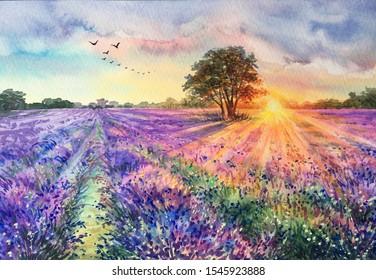 Watercolor lavender field. Sunset lavender field. Violet background. France Provence. Spring summer postcard banner. Fragrant flowers. Aroma. Lavender fields in France. Mediterranean landscape.