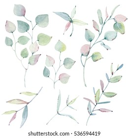 watercolor leaves collection. It's perfect for cards, patterns, flowers compositions, frames, wedding cards and invitations.