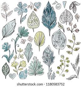 Watercolor leaves, flowers and berries set