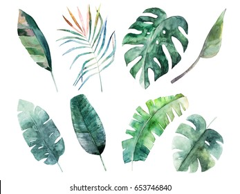 Watercolor leaves set. Hand drawn illustration. Isolated image