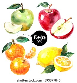 Watercolor lemon, tangerine, apples fruits and vegetables set. Painted isolated natural organic fresh eco food illustration on white background