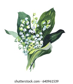 watercolor lily of the valley budget hand painting isolated on white background illustration for paper, greeting cards