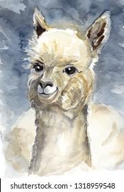 Watercolor llama alpaca for print design. Lama is South America symbol. Cute happy alpaca for trendy art handpainted illustration