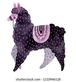 Watercolor llama illustration